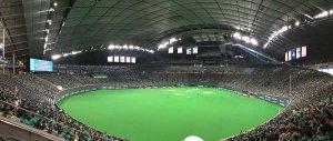 ライオンズ戦 札幌ドーム